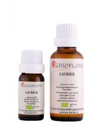 Laurier noble bio - 10 ml - Laurus nobilis - Bioflore