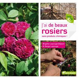 J'ai de beaux rosiers sans produits chimiques -  Terre Vivante
