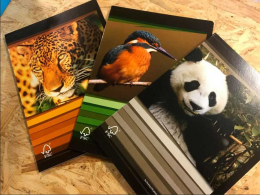 Cahier A4 - Animaux WWF - Commercial