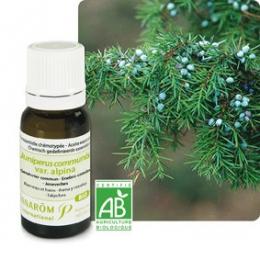 Genévrier commun - Juniperus communis var. alpina - Bio   5ml