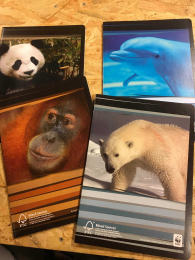 Cahier A4 - Animaux WWF - Quadrillé